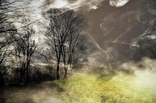 Leon4, Am Kalenberg bei Nebel, Landschaft: Herbst, Gegenwartskunst, Expressionismus