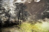 Leon4, Am Kalenberg bei Nebel