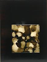 S. Drescher, Zerfall schwarzer Atome | Desintegration of black atoms