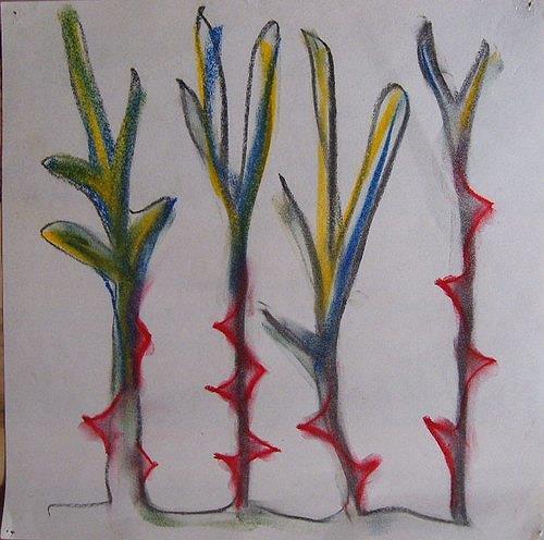 Mirjam Schadendorf, Dornenpflanzen 1, Pflanzen: Blumen, Moderne