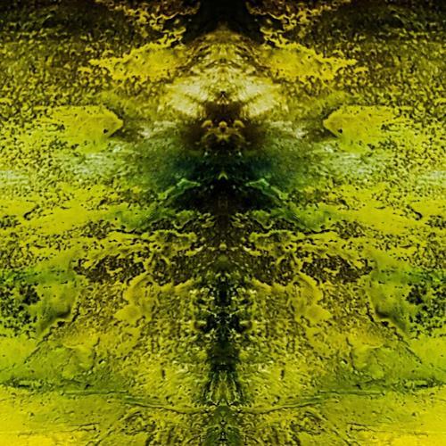 Marina Kowalski, Spiegelung, Natur, Abstrakte Kunst, Abstrakter Expressionismus