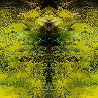 Marina-Kowalski-Natur-Moderne-Abstrakte-Kunst