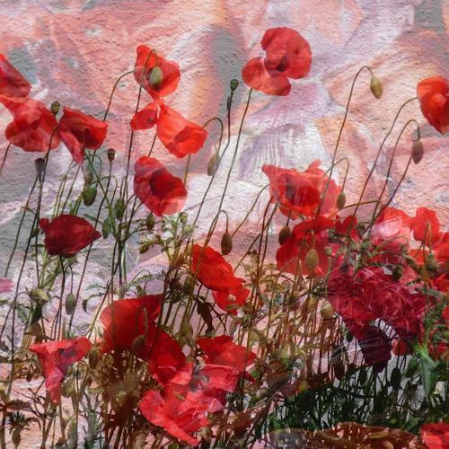 Beate Ehmann, Märchenhaft, Pflanzen: Blumen, Natur, Abstrakte Kunst, Expressionismus