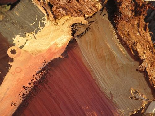 Beate Ehmann, Holz, Abstraktes, Pflanzen: Bäume, Abstrakte Kunst, Expressionismus