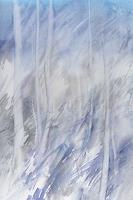 Claudia-Jung-Landschaft-Winter-Pflanzen-Baeume-Gegenwartskunst-Gegenwartskunst