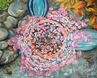 Angelina-Casadei-Pflanzen-Blumen-Poesie