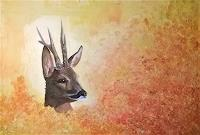 celentano-art, Wildsaison / wild season