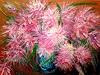 Marina Davidova, Pink mood