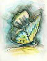 Sissi-Brunner-Schuetzelhofer-Pflanzen-Pflanzen-Blumen-Moderne-Abstrakte-Kunst