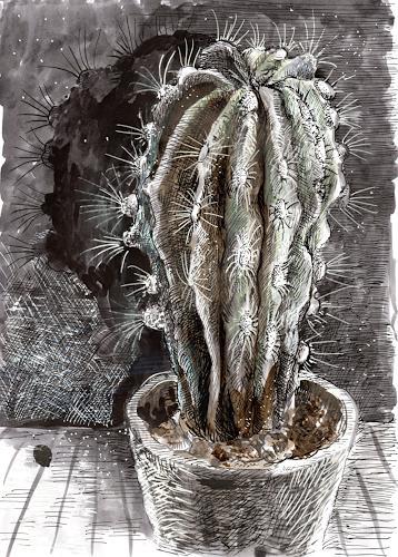 Susanne Thäsler-Wollenberg, Kaktus, Diverse Pflanzen, expressiver Realismus, Abstrakter Expressionismus