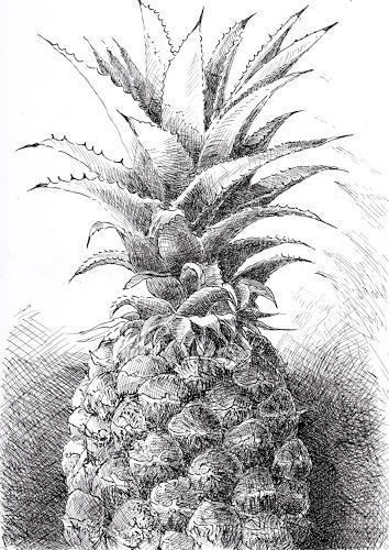 Susanne Thäsler-Wollenberg, Ananas, Pflanzen: Früchte, Diverse Pflanzen, expressiver Realismus