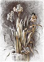 Susanne-Thaesler-Pflanzen-Blumen-Skurril-Moderne-expressiver-Realismus