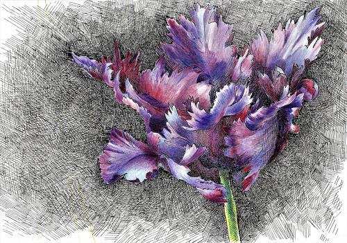 Susanne Thäsler-Wollenberg, Papageientulpe, Pflanzen: Blumen, Fantasie, expressiver Realismus, Expressionismus