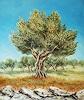 Kristina Valić, Olive tree