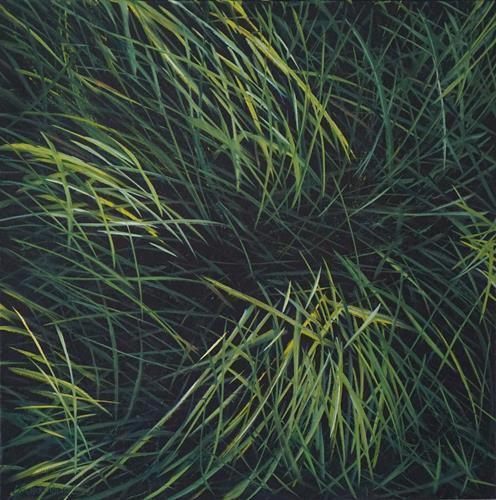Urs Brandenburg, Gras, Natur: Diverse, Gegenwartskunst