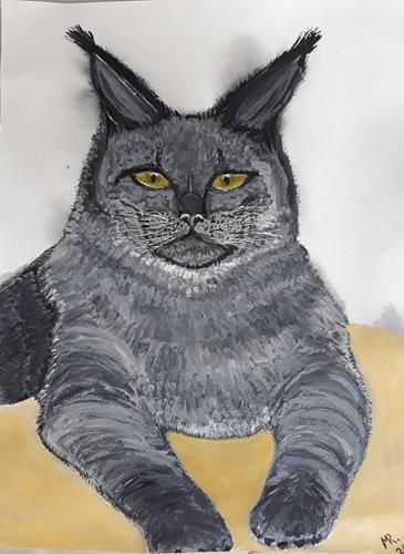 Marie Ruda, Katze Maine Coon., Diverse Tiere, Tiere, Realismus