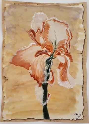 Marie Ruda, Schokolate Schwertlilie., Pflanzen: Blumen, Pflanzen: Blumen, Realismus
