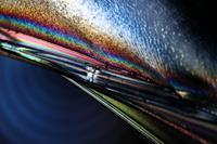 Hardy Tasso, Polarisiertes Licht