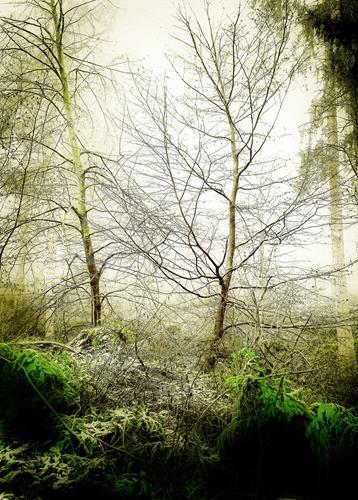 Andrea Kasper, Winterhauch, Landschaft, Landschaft: Winter, Minimal Art, Expressionismus