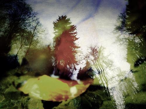 Andrea Kasper, Schatten und Schemen, Natur, Fantasie, Minimal Art