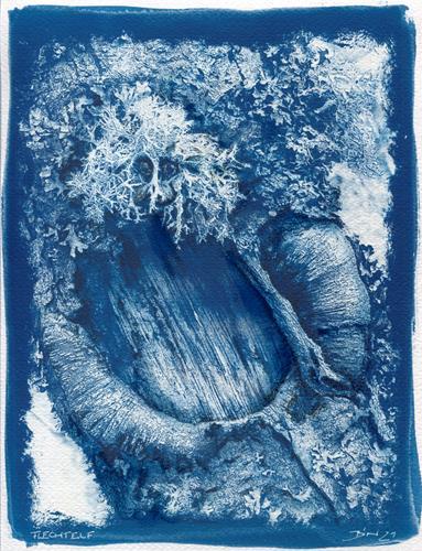 Frank Binder, Flechtelf, Pflanzen: Bäume, Abstrakte Kunst