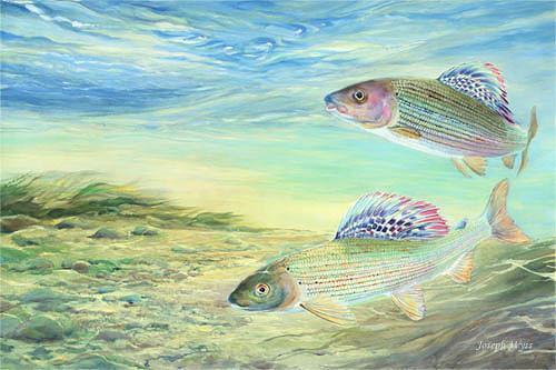 Joseph Wyss, Aeschen, Tiere: Wasser, Natur: Wasser, Gegenwartskunst