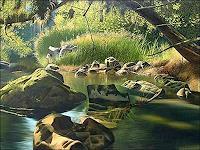 Eduardo-Estrada-Diverse-Landschaften-Natur-Wasser