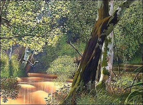 Eduardo Estrada, Aguas revueltas, Natur: Wald, Pflanzen: Bäume, Expressionismus