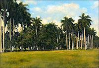 Lorenzo-Linares-Landschaft-Ebene-Pflanzen-Palmen