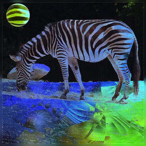 Dieter Bruhns, Zebra, Tiere: Land, Fantasie, Gegenwartskunst, Abstrakter Expressionismus
