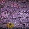 Dieter Bruhns, Violet, Striped House