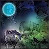 Dieter Bruhns, Blue Moon Shine