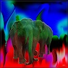 Dieter Bruhns, Abstract Meets Elephant, Fantasie, Abstrakte Kunst