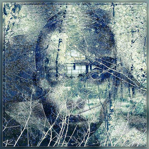 Dieter Bruhns, Undergrowth, Landschaft, Abstrakte Kunst