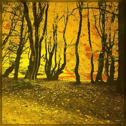 Dieter Bruhns, Infinite, Landschaft, Abstrakte Kunst