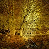 Dieter Bruhns, Swedish Autumn, Landschaft, Abstrakte Kunst