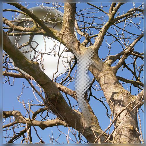 Dieter Bruhns, Behind the Tree, Landschaft, Abstrakte Kunst