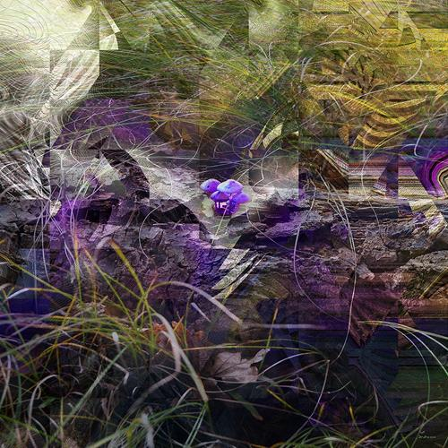 Dieter Bruhns, Forest Ground, Landschaft, Abstrakte Kunst