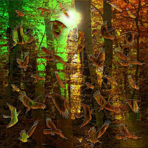 Dieter Bruhns, What's Going on, Landschaft, Abstrakte Kunst