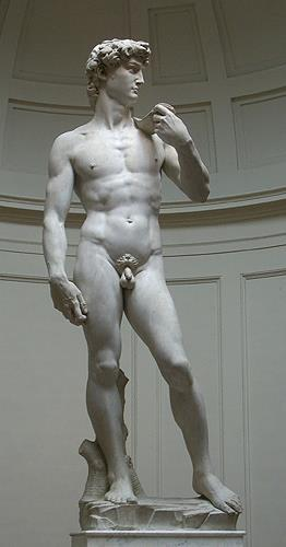 Michelangelo, David von Michelangelo, Akt/Erotik: Akt Mann, Manierismus