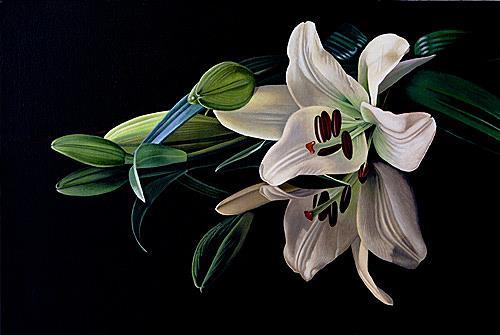 Dietrich Moravec, Sein und Schein, Pflanzen: Blumen, Stilleben, Fotorealismus, Expressionismus