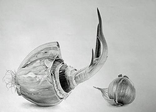 Dietrich Moravec, Mit letzter Kraft, Ernte, Pflanzen: Früchte, Fotorealismus, Expressionismus