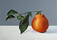 Dietrich-Moravec-Stilleben-Pflanzen-Fruechte-Moderne-Fotorealismus