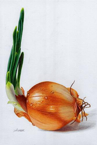 Dietrich Moravec, Zwiebel mit Wassertropfen/Onion with droplets, Essen, Pflanzen: Früchte, Fotorealismus, Expressionismus
