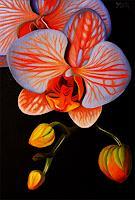 Dietrich-Moravec-Pflanzen-Blumen-Stilleben-Neuzeit-Realismus