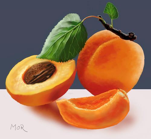 Dietrich Moravec, Apricots, Pflanzen: Früchte, Stilleben, Realismus, Expressionismus
