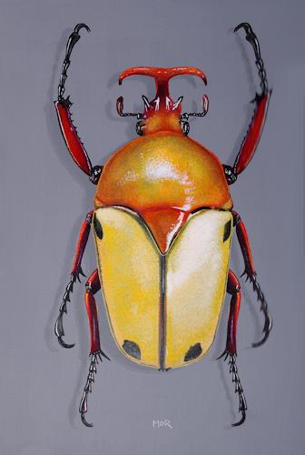 Dietrich Moravec, Eudicella tetraspilota, Tiere: Land, Natur: Erde, Hyperrealismus, Expressionismus