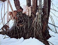 Dietrich-Moravec-Landschaft-Winter-Natur-Wald-Moderne-Fotorealismus