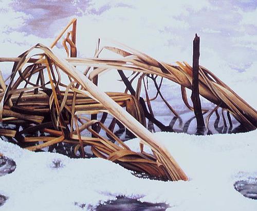 Dietrich Moravec, Binsen im Eis, Natur: Wasser, Landschaft: Winter, Hyperrealismus, Expressionismus