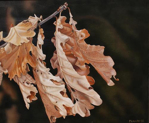 Dietrich Moravec, SpätherbstEichenlaub, Pflanzen: Bäume, Natur: Wald, Hyperrealismus, Fotorealismus, Moderne